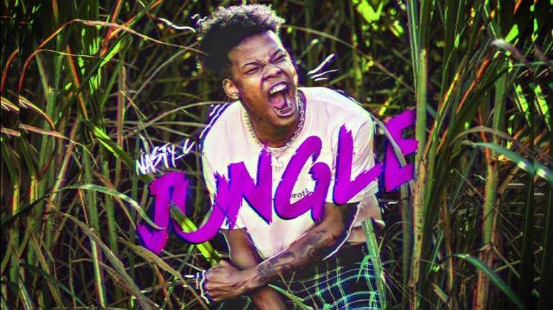 Nasty C – Jungle (Music Video)